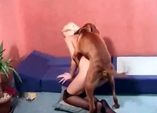 Passionate blonde is enjoying quick bestiality