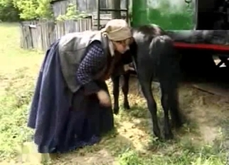 Small black pony sucked by farm zoofil