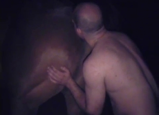 Bald dude licks and fucks his horny animal